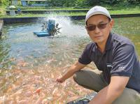 IPB Berhasil Temukan Vaksin Meningkatkan Kekebalan Ikan dari Isolat Lokal