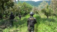 Kejar Kelompok MIT, Ketangguhan TNI-Polri Diuji