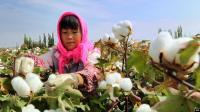 Ada Dugaan Perbudakan, AS Larang Warganya Impor Kapas dari Xinjiang China