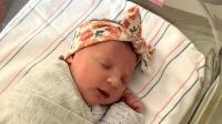 Pecah Rekor: Bayi Perempuan Lahir dari Embrio yang Diciptakan 27 Tahun Lalu