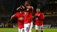 Berbatov Harap Martial Bisa Berikan Kontribusi Lebih untuk Man United