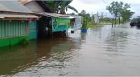 Kondisi Terkini Banjir di Kalsel, Perahu Karet dan Helikopter Jadi Transportasi Utama
