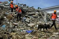 Gempa Sulawesi Barat, Basarnas: 90 Orang Meninggal Dunia