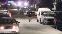 Pembunuhan Massal, 5 Orang Termasuk Ibu Hamil Tewas Ditembak