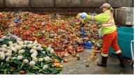 <i>Wow</i>, Sampah Makanan yang Dibuang Capai 900 Juta Ton, 690 Juta Orang Kelaparan