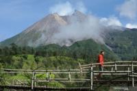 Lagi, Gunung Merapi Muntahkan Awan Panas Sejauh 1,4 Km ke Arah Barat Daya