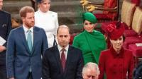 Pemakaman Pangeran Philip, Pangeran William dan Harry Tidak Berdampingan