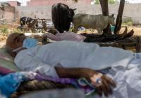 Desa di India Ini Rawat Para Pasien Covid-19 di Bawah Pohon