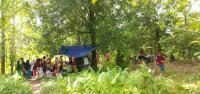 Gempa M6,1 di Maluku Tengah, Warga Evakuasi Mandiri