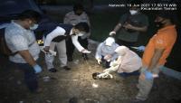 Warga Pemalang Heboh, Ditemukannya Mayat Orok dalam Toples