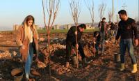 LSM Tanam 1.000 Pohon Untuk Hijaukan Kota di Irak