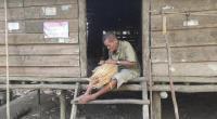 Atok Antat, Lansia Sebatang Kara 30 Tahun Hidup Tanpa Listrik