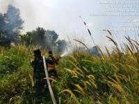 Satgas Gabungan Berhasil Padamkan 5 Hektar Lahan Terbakar di Kabupaten Ogan Ilir