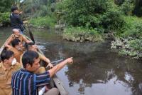 Sungai di Langkat Tercemar Limbah, Ribuan Ikan Mati Mendadak