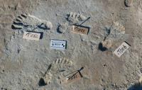Jejak Kaki Manusia 'Tertua' Berusia 23.000 Tahun Ditemukan, Apa yang Terjadi Saat Itu?
