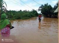 160 Rumah Warga Kabupaten Kampar Riau Kebanjiran hingga Hampir 1 Meter