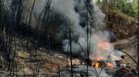 Pasca Ledakan, 1.403 Sumur Minyak Ilegal Ditutup Polisi