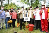 Perkuat Mitigasi Berbasis Vegetasi, Kepala BNPB dan Gubernur Maluku Tanam Pohon Damar