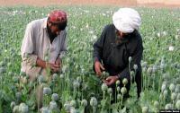 Kecanduan Narkoba dalam Keluarga, Anak-Anak Afghanistan Terjebak dalam Lingkaran Setan