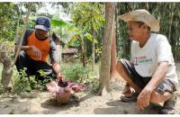 5 Bunga Bangkai Muncul Bersamaan Bikin Heboh Warga Lereng Gunung Merapi