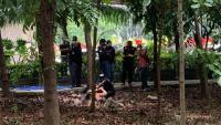 Bekasi Geger! Mayat Pria dengan Tangan Terikat Ditemukan di Tamah Hutan Kota