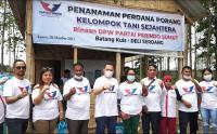 Partai Perindo Sumut Bina Petani Lokal Kembangkan Komoditi Porang