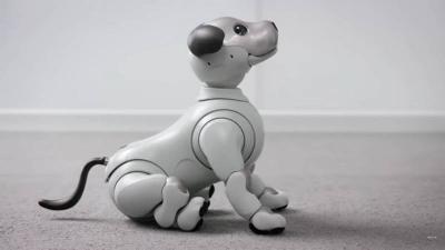 Robot Anjing Aibo Dibekali Kemampuan Menyapa Manusia