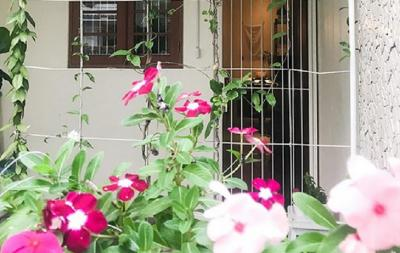 Dekorasi Rumah dengan Warna Warni Alami dari Tanaman Berbunga