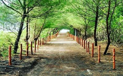 Terpesona Pantai Goa Cemara, Kalau Main ke Sana Hati-Hati Ombaknya Ganas