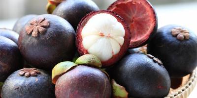 RI Ekspor 475,5 Ton Manggis ke China di Tengah Corona