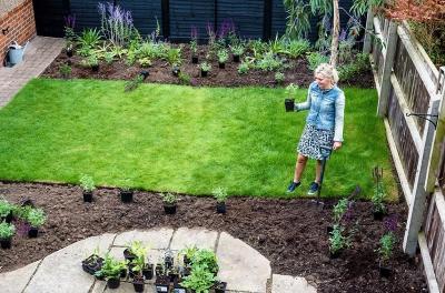 Ragam Ide Taman Minimalis, Bisa Diterapkan di Rumah
