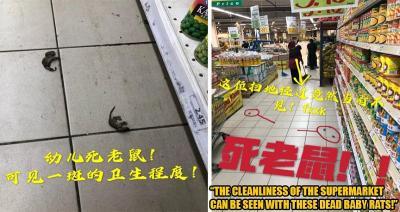 Belanja ke Supermarket, Wanita Ini Temukan Banyak Tikus Mati!