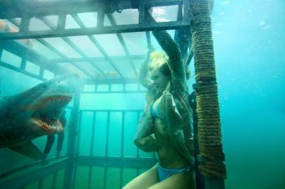 4 Fakta di Balik Film Shark Night