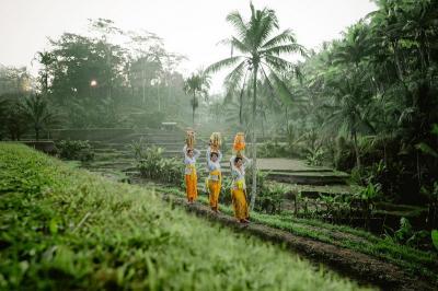 Bangkitkan Pariwisata, Bali Fokus Lestarikan Lingkungan