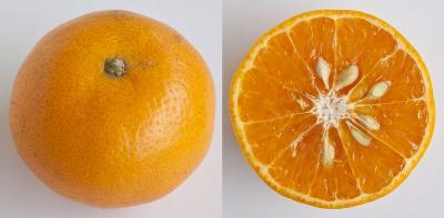 4 Varian Jeruk Lokal yang Tak Kalah dengan Kualitas Impor