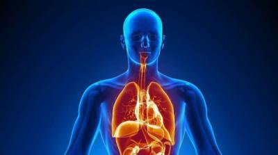 Alquran dan Sains Ungkap Manusia Punya Sistem Pendingin Tubuh