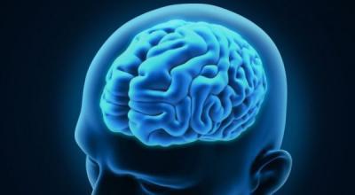 Ilmuwan Ungkap Pentingnya Tidur untuk Kesehatan Otak
