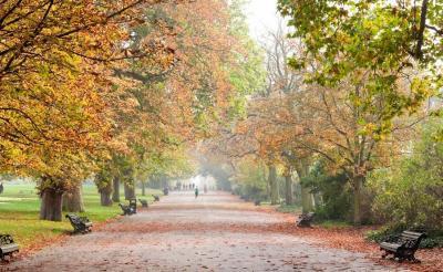 6 Alasan Traveling ke Inggris di Musim Gugur