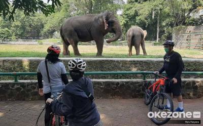 Taman Margasatwa Ragunan Dikunjungi Ratusan Orang Per Hari Selama PSBB Transisi