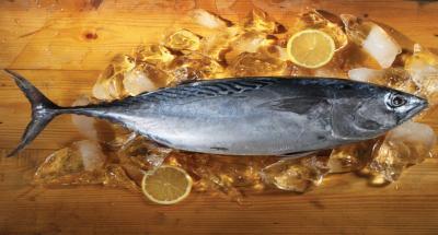 Tips Supaya Ikan Tidak Amis Sebelum Dimasak