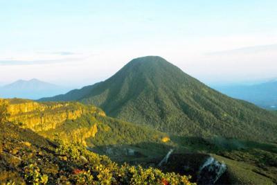 Viral 2 Pendaki Bugil Berpose di Lokasi Sakral Gunung Gede Pangrango