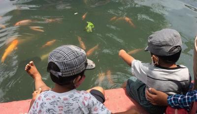 3 Destinasi Wisata Kampung Ikan di Pulau Jawa