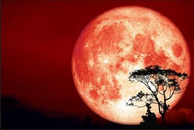 Langka! Perayaan Halloween Bareng Fenomena The Full Hunter Moon