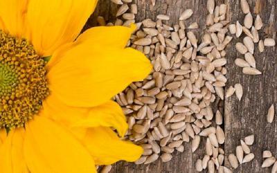 8 Makanan yang Bikin Awet Muda, Sering Konsumsi Yuk