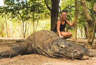 Kepentingan Pariwisata Jangan Sampai Abaikan Habitat Komodo