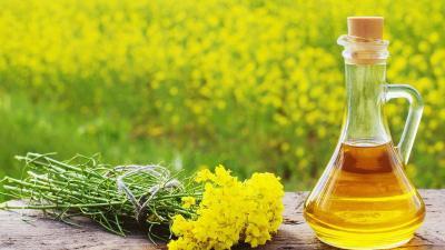 Beberapa Khasiat Minyak Mustard untuk Atasi Masalah Kulit