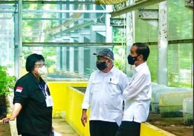 Jokowi Tinjau Lokasi Pembangunan Pusat Perbenihan untuk Atasi Bencana Ekologis