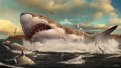Terungkap, Hiu Raksasa Ini Huni Pembibitan 25 Tahun Sebelum Arungi Lautan