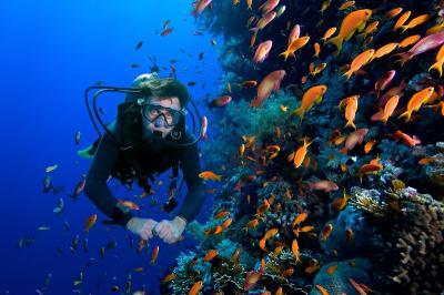 Indonesia Masih Dipercaya International sebagai Destinasi Wisata Aman