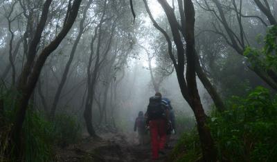 TNI-Polri Buru Teroris, Jalur Pendakian Gunung Lorekatimbu Ditutup